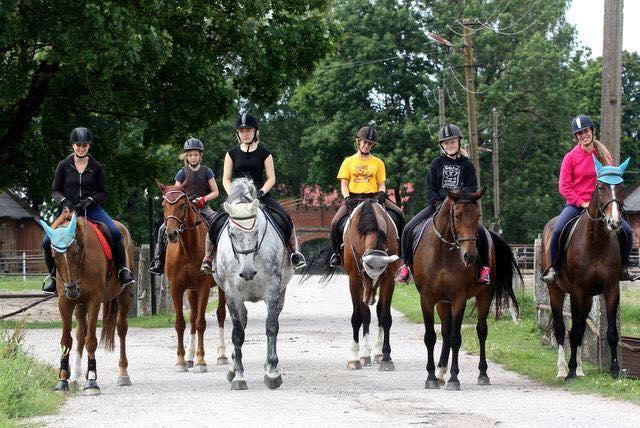 TORI HK-hobused ja lapsed (2)